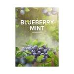 Табак 4:20 Hookah Tea Blueberry Mint (Черника Мята) 125 грамм