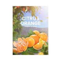 Табак 4:20 Hookah Tea Citrus Orange (Цитрус Апельсин) 125 грамм