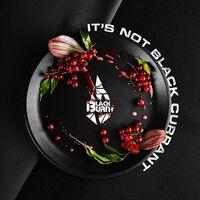 Табак Black Burn It's Not Black Currant (Это не черная смородина) 100 грамм