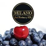 Табак MILANO (Милано) 100 грамм - Red Blueberry M98 (Красная Черника)