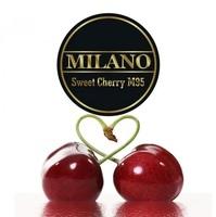 Табак MILANO (Милано) 100 грамм - Sweet Сherry M95 (Сладккая Вишня)